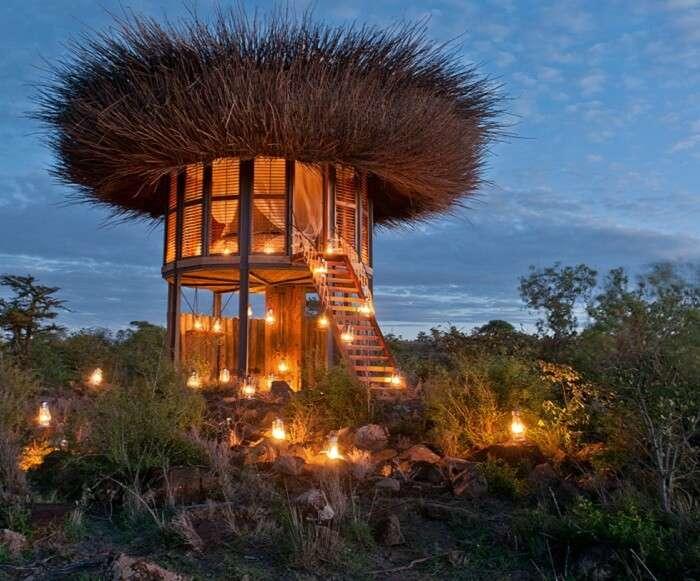 NAY PALAD Bird Nest Kenya