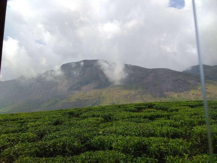 Trip to Munnar
