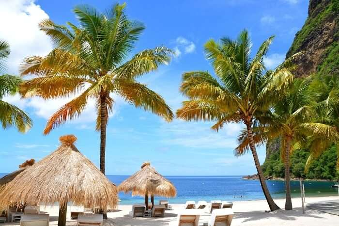 Beach In St. Lucia, Caribbean