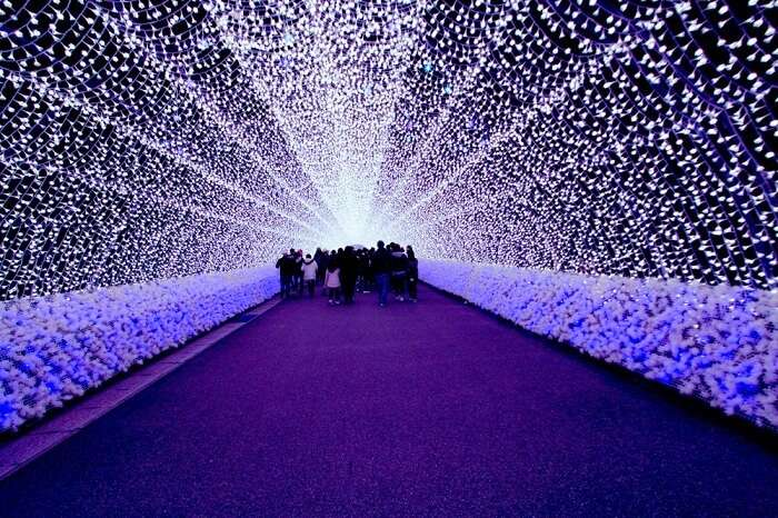 lit walkway Japan winter lights festival