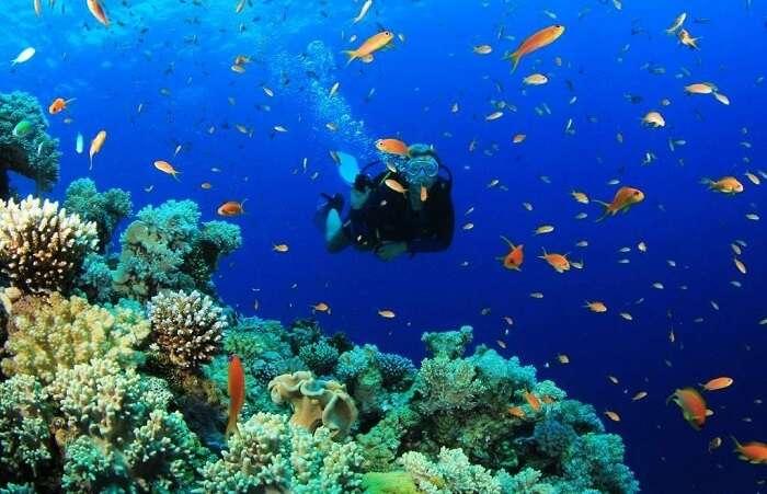 Scuba Dive In Blue Lagoon Turkey
