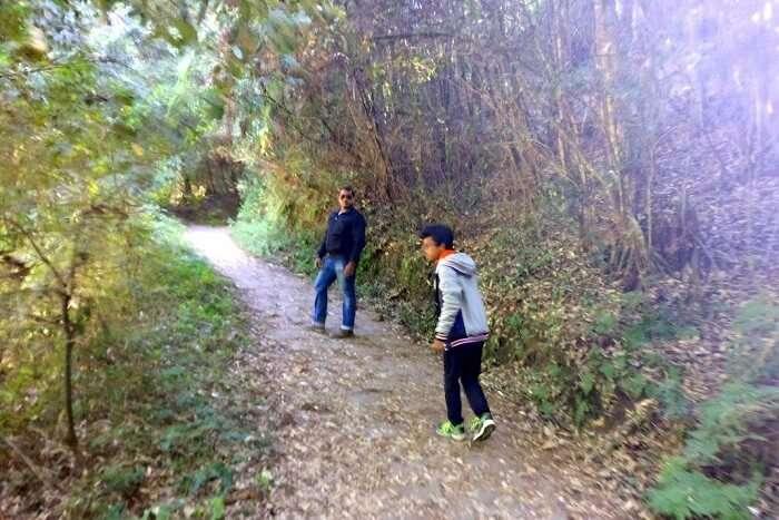 Shantanu northeast trip- forested path to rabdentse ruins