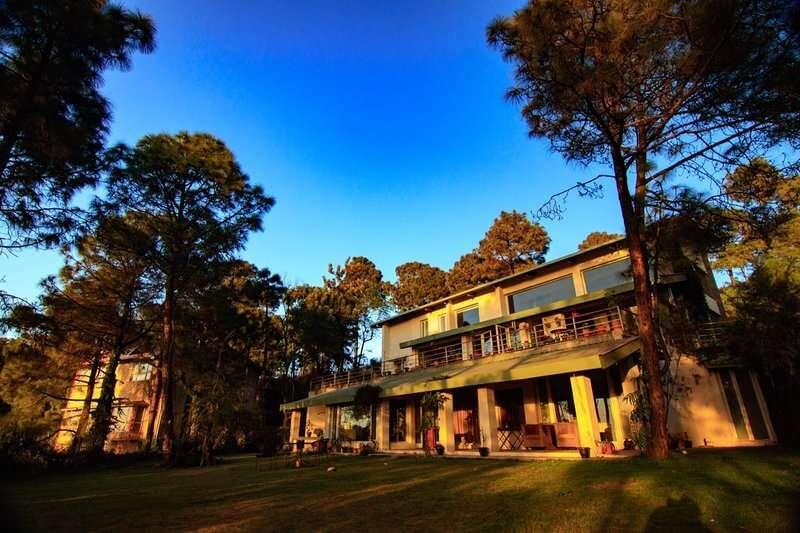 a wonderful cottage amid trees