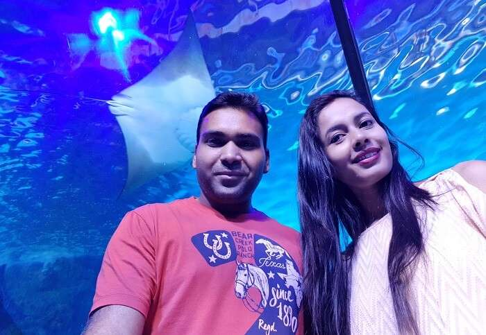Aquarium and Underwater Zoo Dubai
