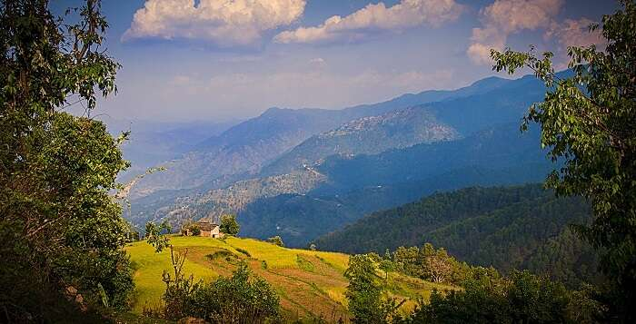 views from binsar, almora