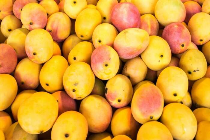 Delhi international mango festival