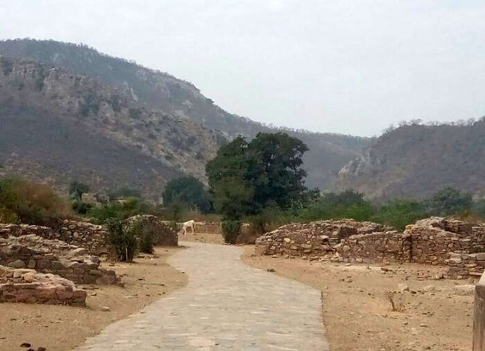 Way to Bhangarh