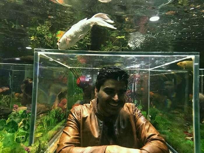 udaipur aquarium