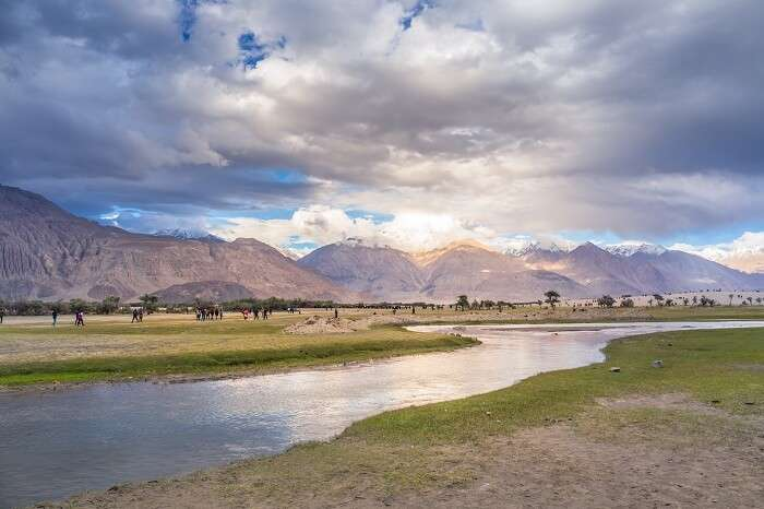 View Of Leh