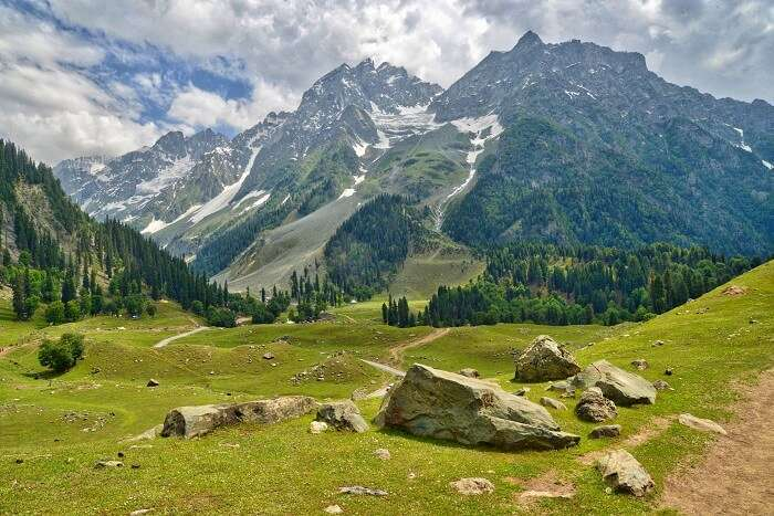 View Of Sonmarg
