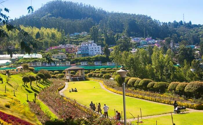 best time for ooty honeymoon