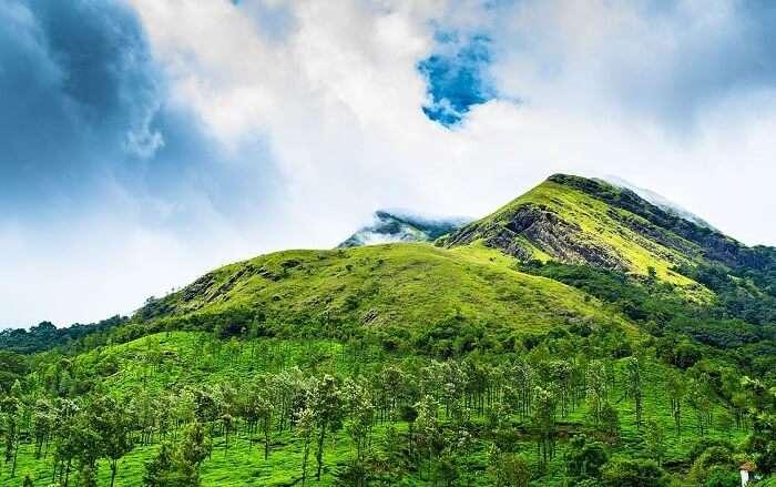 Enjoy trekking to Chembra Peak