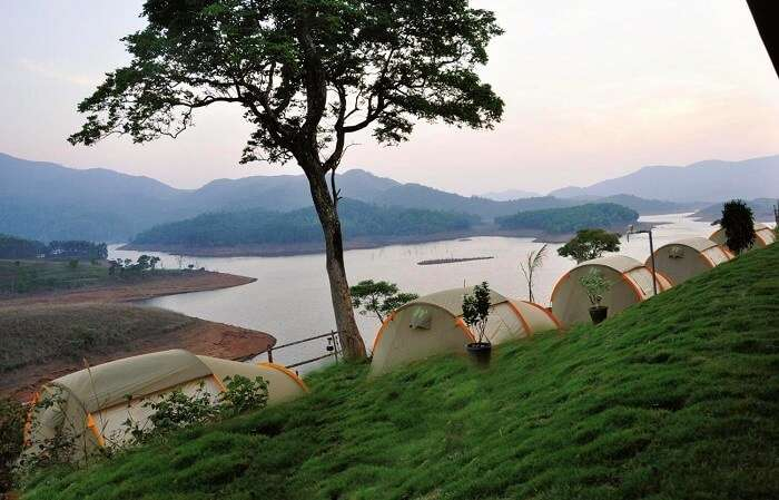 Enjoy Camping In Wayanad