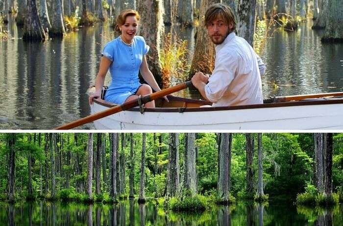 South Carolina In The Notebook