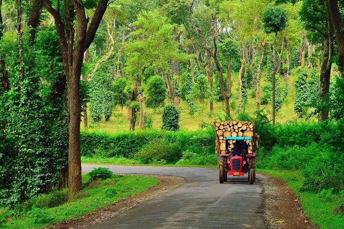 Coorg In Monsoon: Explore The Beauty Of This Town In 2019