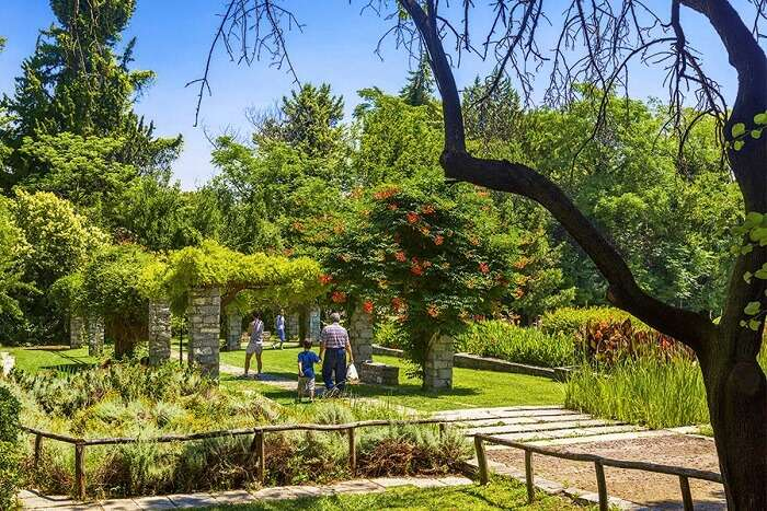 Go for a picnic in the Diomedes Gardens in athens