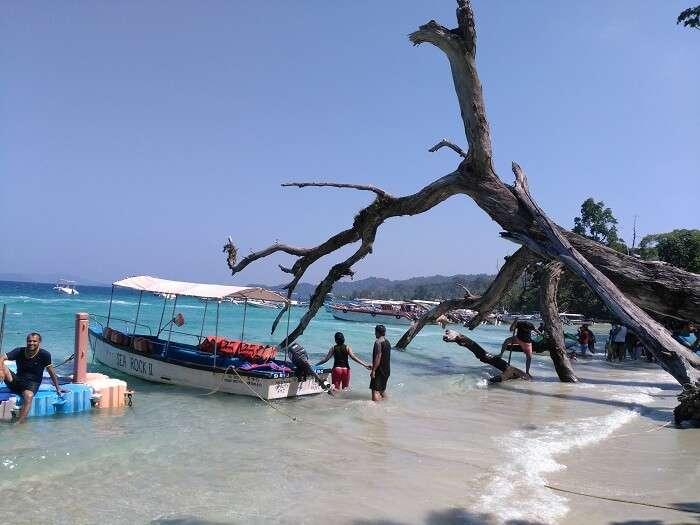 elephanta beach in andaman