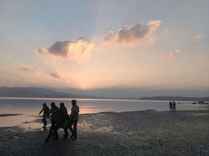 nature in chidiya tapu