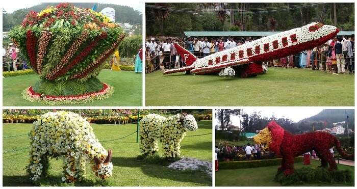 Take part in the Summer Festival of Ooty