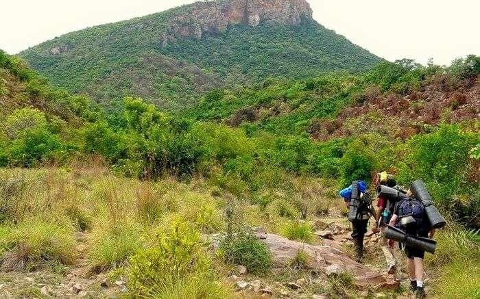 acj-1704-trekking-in-coorg (11)