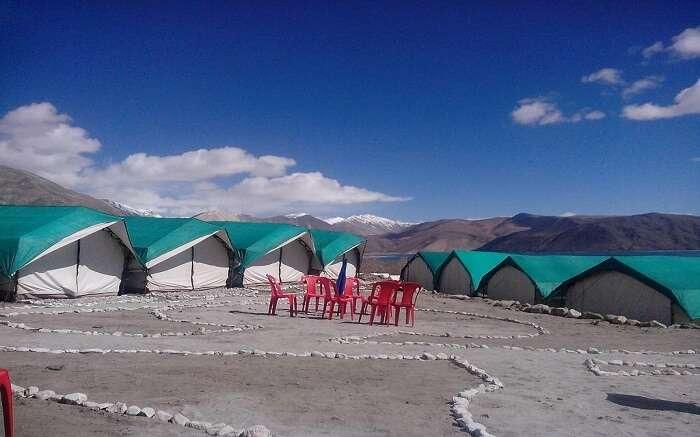 acj-2404-camping-in-leh (2)