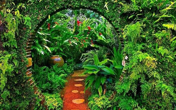 brief-garden-sri-lanka ss30042018