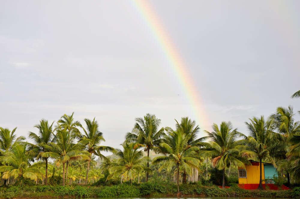 rainbow in goa
