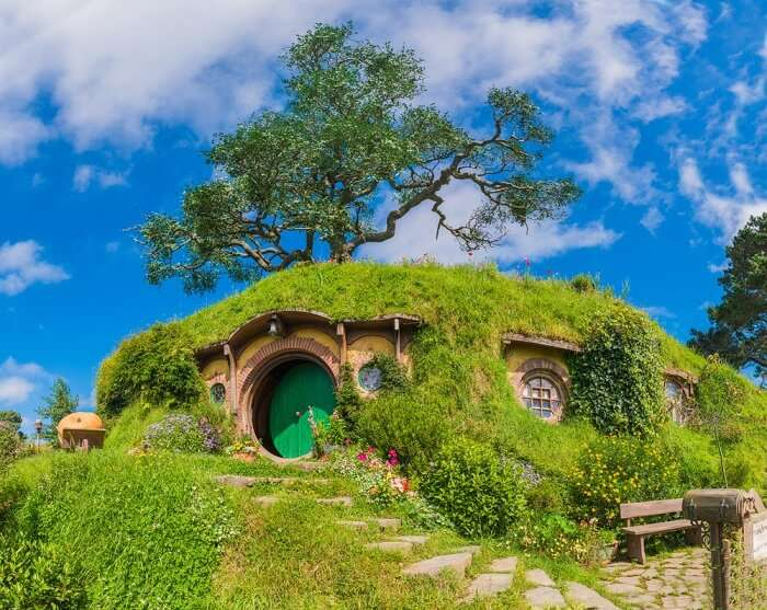 a gorgeous house amid greeness
