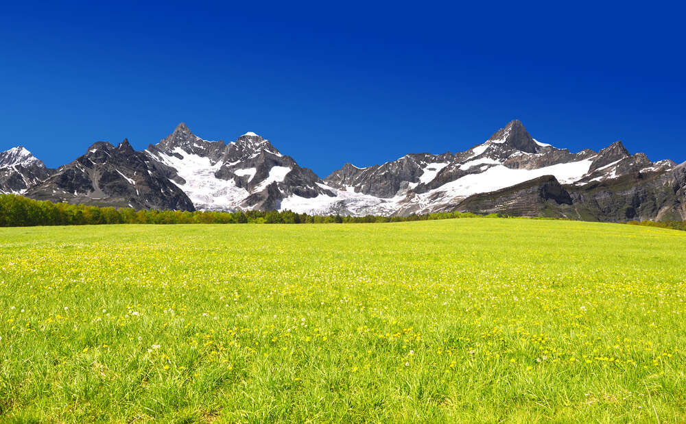 green fields in the mountains