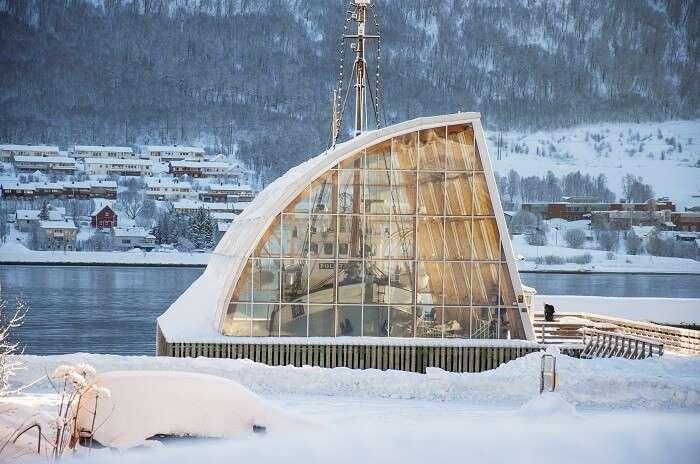 visit Tromsø University Museum norway