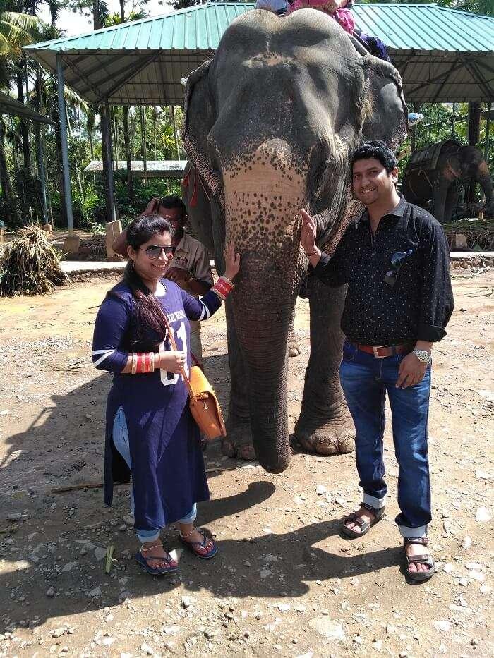 Elephant ride Kerala
