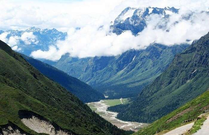 See the colours of Yumthang Valley of Flowers
