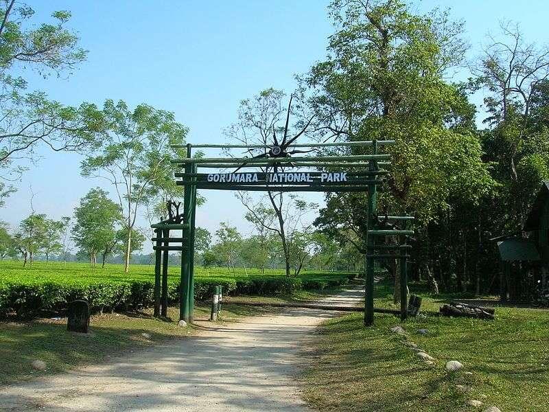 the entrance of Gorumara National Park