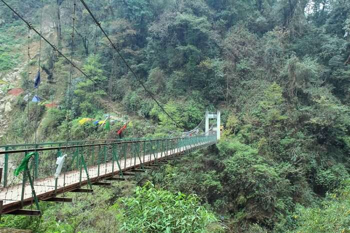 Goechala trek suspension bridge Kunchenjunga