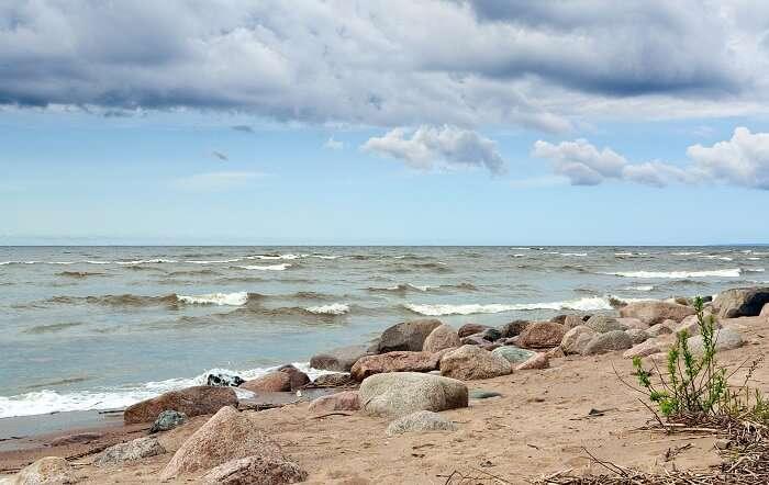 Tarkhovka Beach Russia