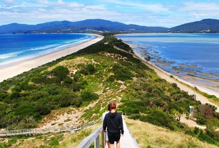 Bruny Island copy