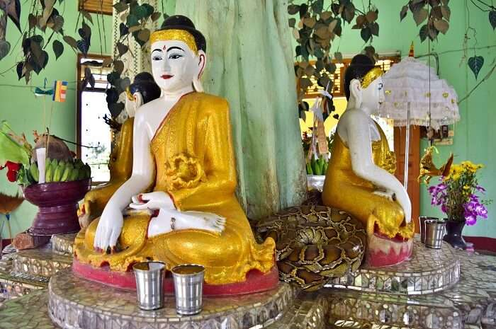 Buangdawgyoke Pagoda myanmar