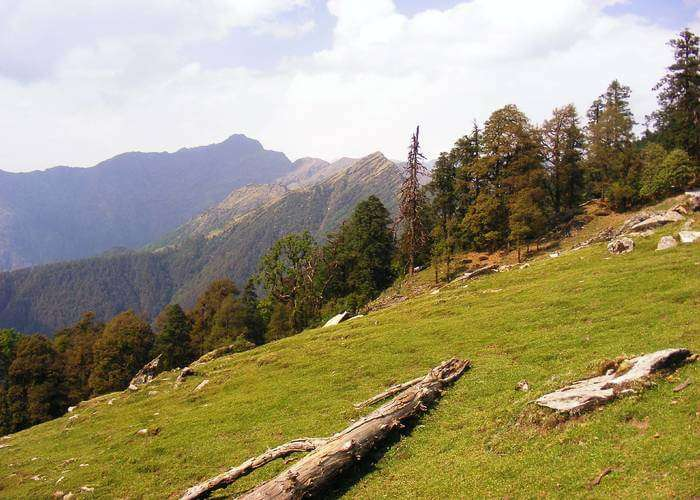 Meadows of Chopta