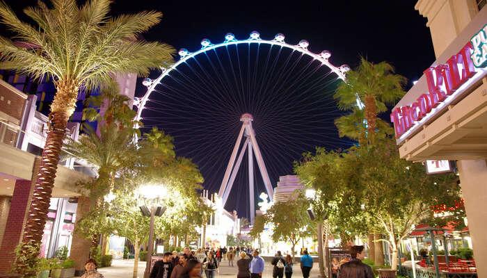 Go on the High Roller observation wheel