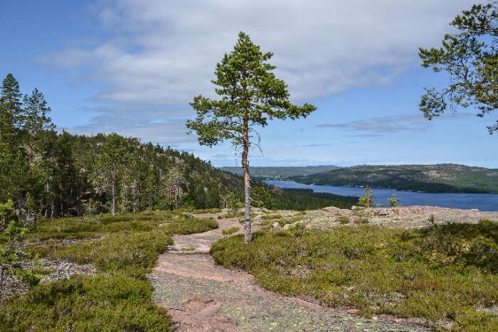 High Coast in Sweden