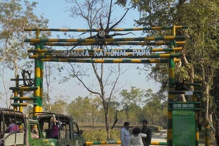 How to reach Gorumara National Park