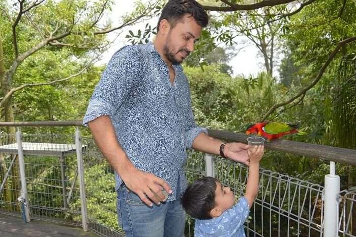anshu singapore trip: feeding parrot