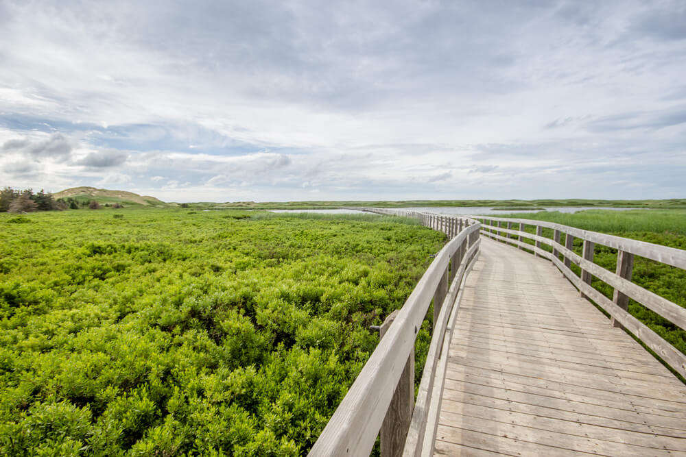a wooden bridge in Prince Edward Island National Park