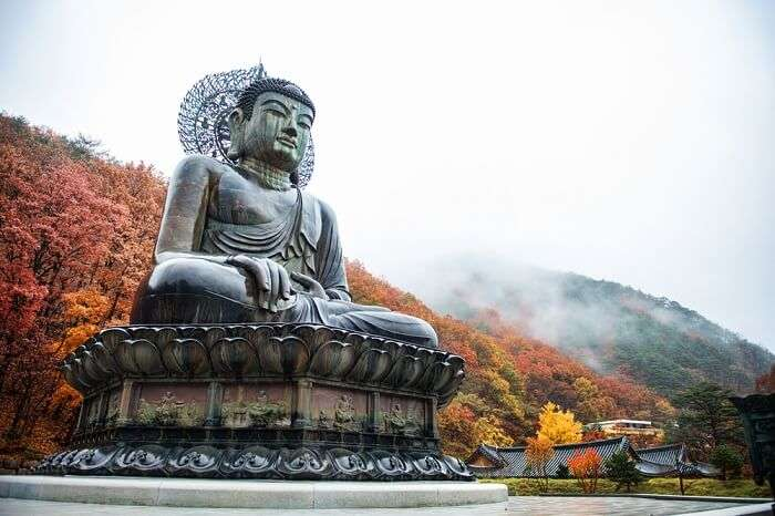 awestruck by the giant Buddha