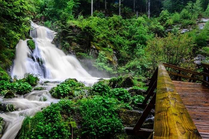 Triberg Germany Black Forest Waterfall Water germany