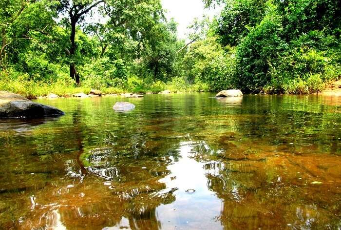 Irai River