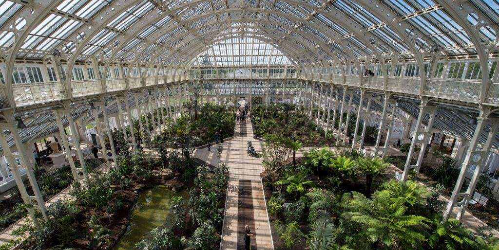 inside the grand Temperate House