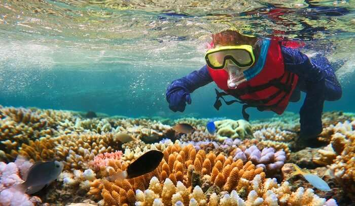 world famous coral reef system