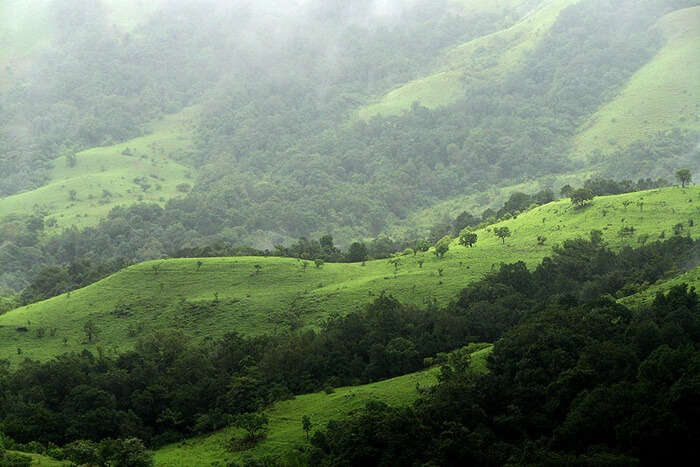 Best Time To Visit Kudremukh National Park