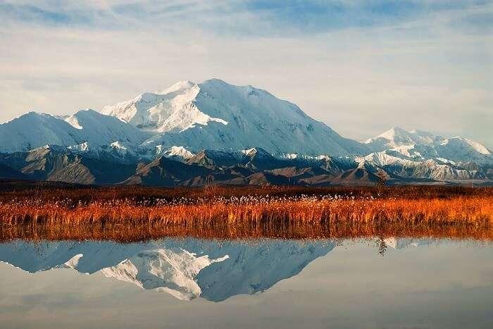 Climb Mount McKinley